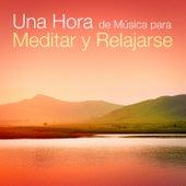 Una Hora de Música para Meditar y Relajarse by Various Artists