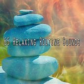 65 Relaxing Routine Sounds de Musica Relajante