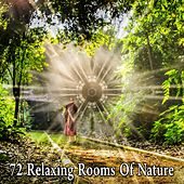 72 Relaxing Rooms Of Nature by Sounds of Nature Relaxation