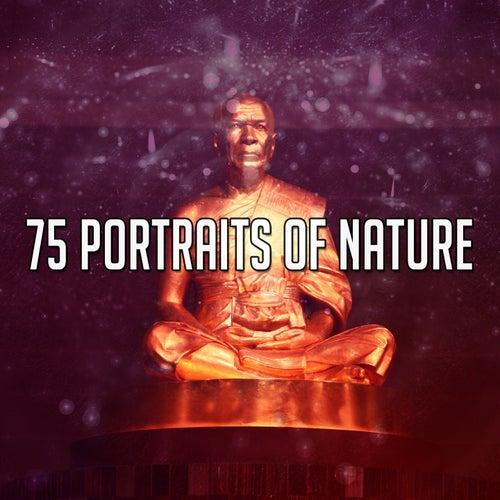 75 Portraits Of Nature de Yoga Music