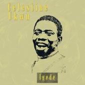 Celestine Ukwu by Celestine Ukwu