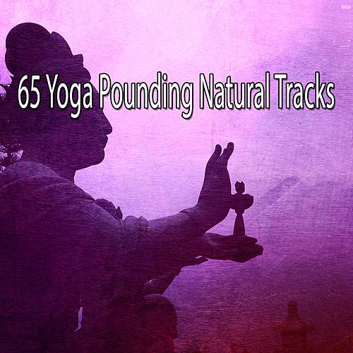 65 Yoga Pounding Natural Tracks de Yoga Music