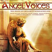 Angel Voices by Various Artists