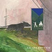Don't Think Twice, It's All Right by Cicada Rhythm