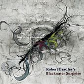 Play & Download Out of the Wilderness by Robert Bradley's Blackwater Surprise | Napster