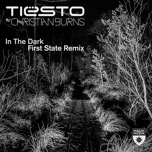 In the Dark de Tiësto