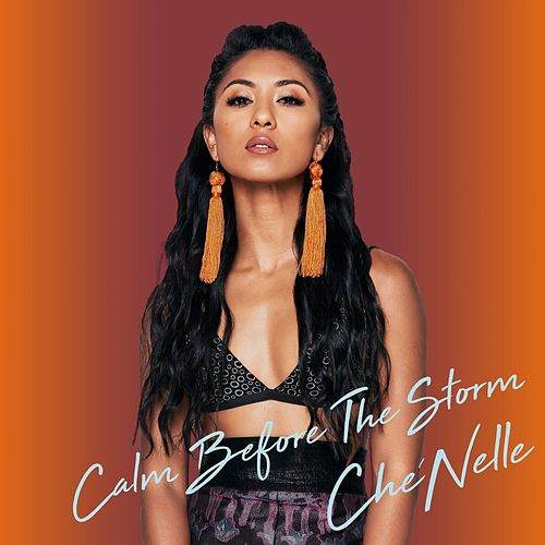 Calm Before the Storm by Che'Nelle