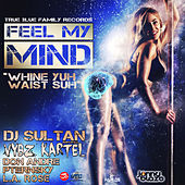 Feel My Min / Whine Yuh Waist Suh by Dj Sultan