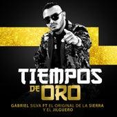 Tiempos De Oro by Gabriel Silva