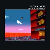 Pleader (Mr. Jukes Remix) by alt-J