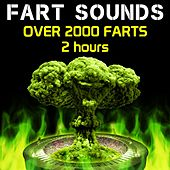 Fart Sounds - Over 2000 Farts (2 Hours) by Fart Fest