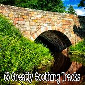 65 Greatly Soothing Tracks by Sounds of Nature Relaxation