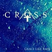Grace Like Rain (feat. Crosswords) by Cross