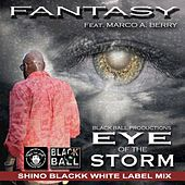 Eye of The Storm (feat. Marco A. Berry) by Fantasy