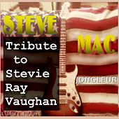 Tribute to Stevie Ray Vaughan by Steve Mac