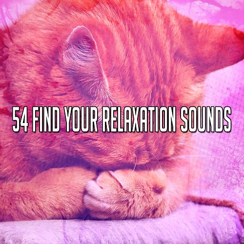 54 Find Your Relaxation Sounds de The Rest