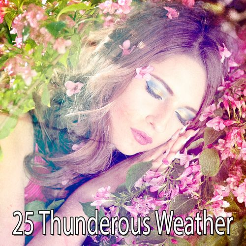 25 Thunderous Weather by Thunderstorm