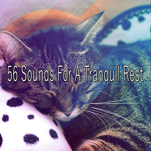 56 Sounds For A Tranquil Rest by S.P.A