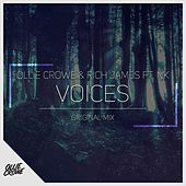 Voices (feat. NK) by Rich James