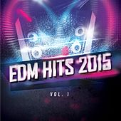 EDM Hits 2015 by Various Artists