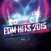 EDM Hits 2015 de Various Artists