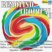Remolino Tropical 3 by Various Artists