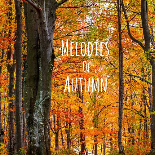 Melodies of Autumn by Meditation Music Zone
