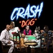 Dog (feat. Q) by Crash