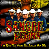 Play & Download A Que Te Sabe El Amor Sin Mi by Sangre Felina | Napster