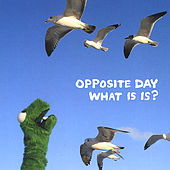 Play & Download What Is Is? by Opposite Day | Napster