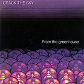Play & Download From the Greenhouse by Crack The Sky | Napster