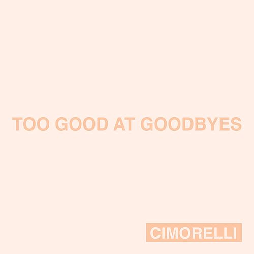 Too Good at Goodbyes by Cimorelli