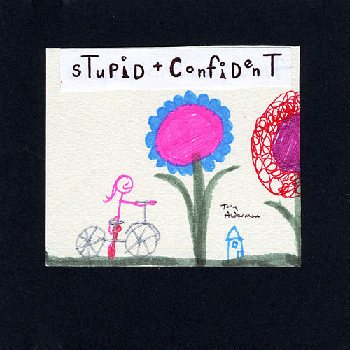 Stupid and Confident by Tony Alderman