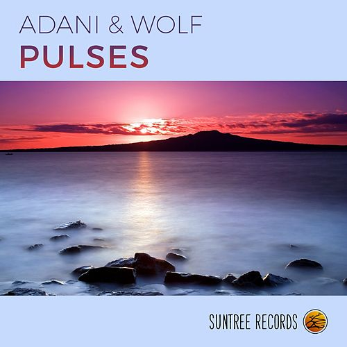 Pulses by Adani & Wolf