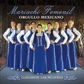 Llegaron las Mujeres by Mariachi Femenil Orgullo Mexicano