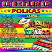 Fiesta Mexicana, Vol. 2: El Disco de Oro (Polkas) by Mariachi México de Pepe Villa