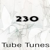 Tube Tunes, Vol.230 by Various Artists
