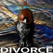 Jet Fuel by The Divorce