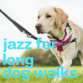 Jazz For Long Dog Walks de Various Artists