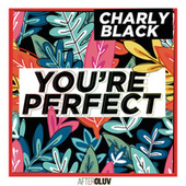 You're Perfect by Charly Black