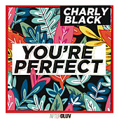 You're Perfect de Charly Black