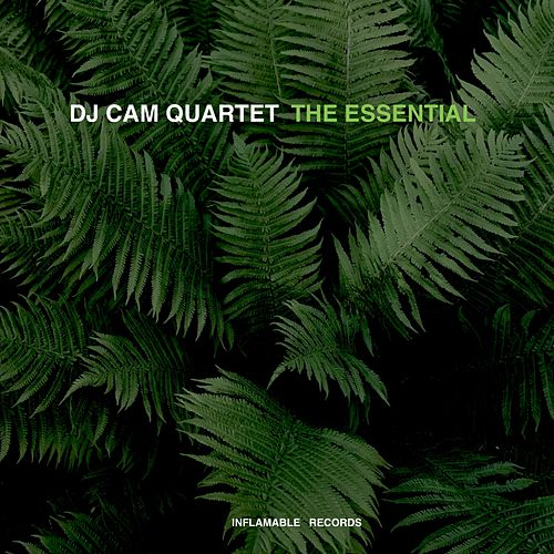 The Essential by DJ Cam