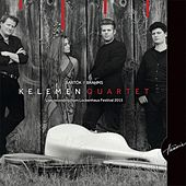 Live concert from Lockenhaus Festival 2015 by Kelemen Quartet