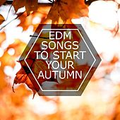 EDM Songs To Start Your Autumn de Various Artists