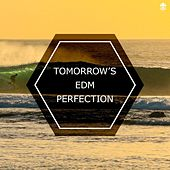 Tomorrow's EDM Perfection by Various Artists