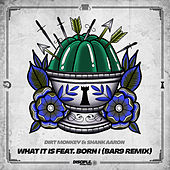 What It Is Ft. Born I Music (BAR9 Remix) by Dirt Monkey