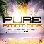 Pure Emotions Riddim - Single by Various Artists