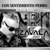 Muchacha Magica by Zavala