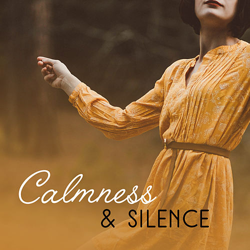 Calmness & Silence – Deep Sleep, Pure Relaxation, Perfect Rest, Nature Sounds Relieve Stress, Pure Waves de Deep Sleep Meditation