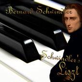Schwindler's Liszt - The 50 Best Piano Pieces of Franz Liszt by Bernard Schwindler